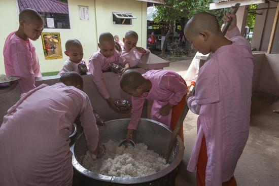 Water damage magic rice
